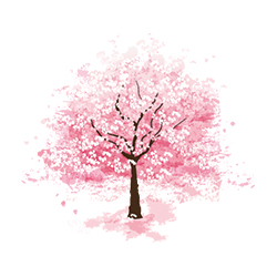 icone-nature6
