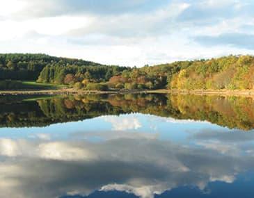 Parc Naturel du Morvan